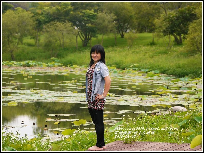 2014-05-池上大坡池18.jpg
