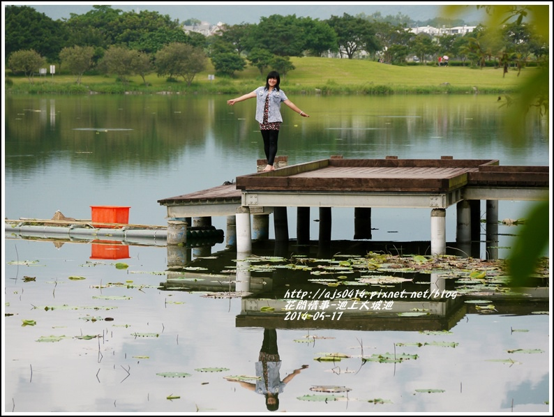 2014-05-池上大坡池37.jpg