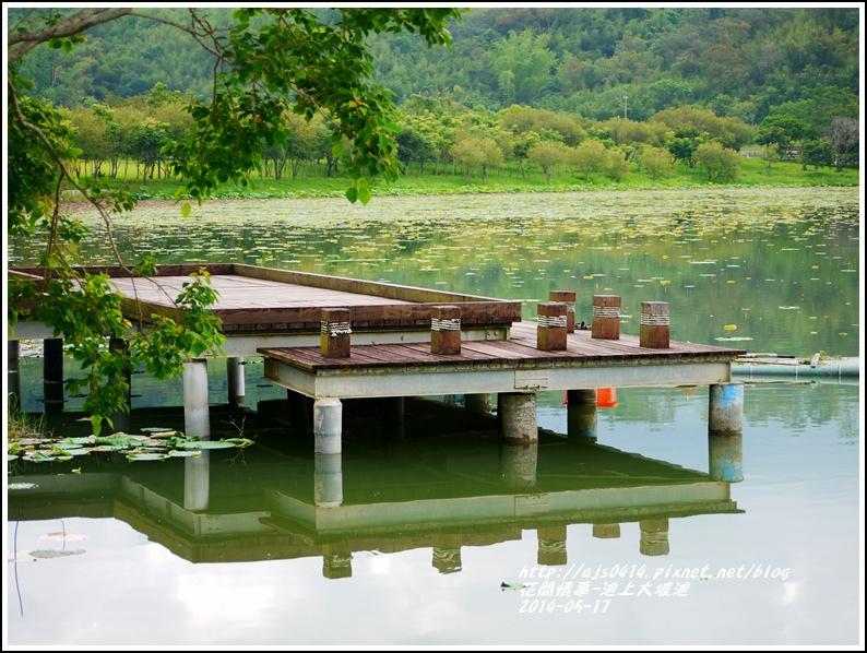 2014-05-池上大坡池39.jpg