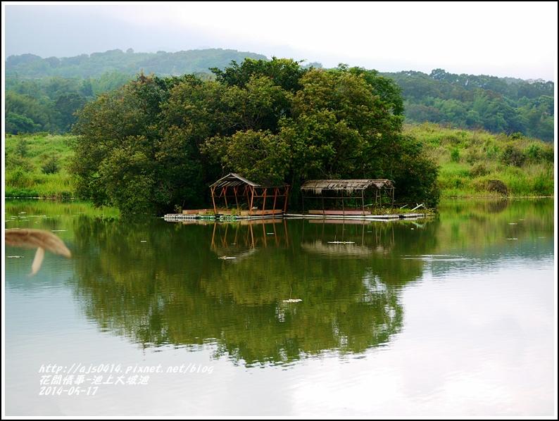 2014-05-池上大坡池41.jpg