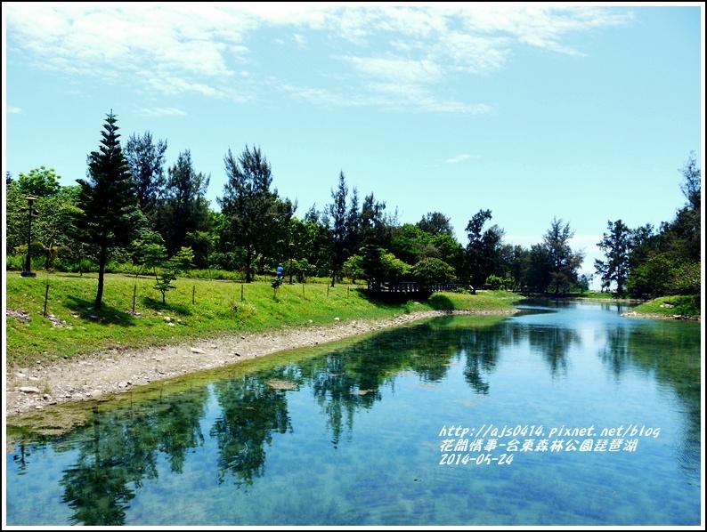 2014-06-琵琶湖3.jpg