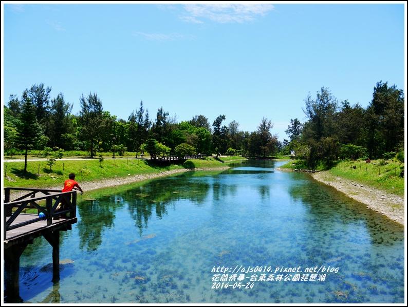 2014-06-琵琶湖10.jpg