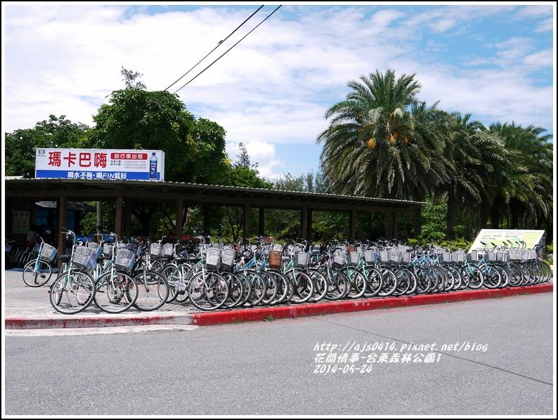 2014-06-台東森林公園3.jpg