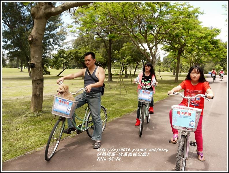 2014-06-台東森林公園4.jpg