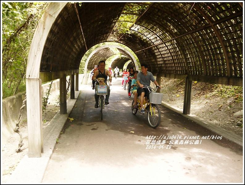 2014-06-台東森林公園5.jpg