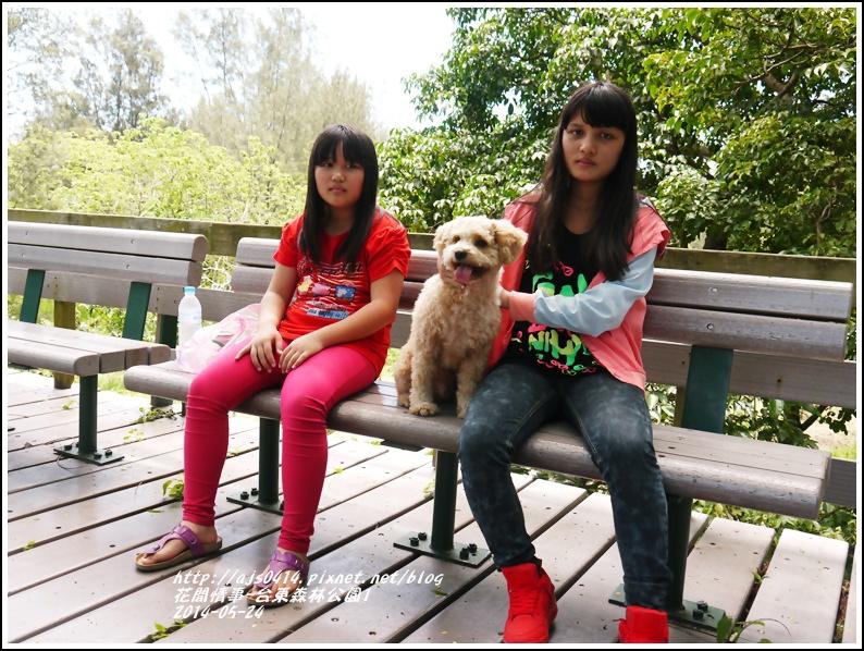 2014-06-台東森林公園6.jpg