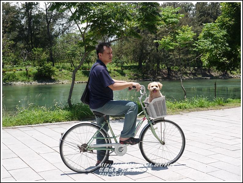 2014-06-台東森林公園10.jpg