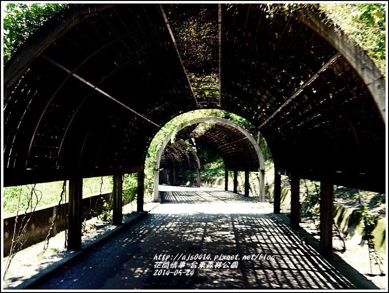 2014-06-台東森林公園15.jpg