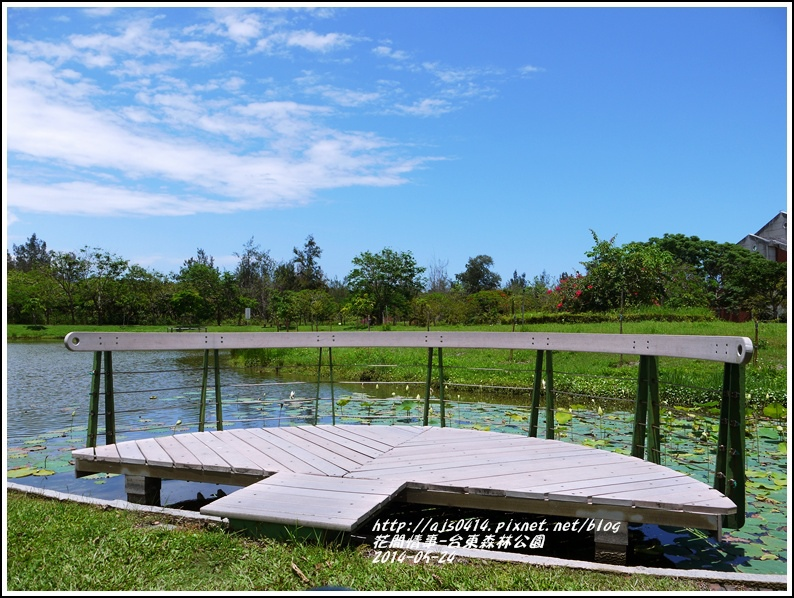 2014-06-台東森林公園22.jpg