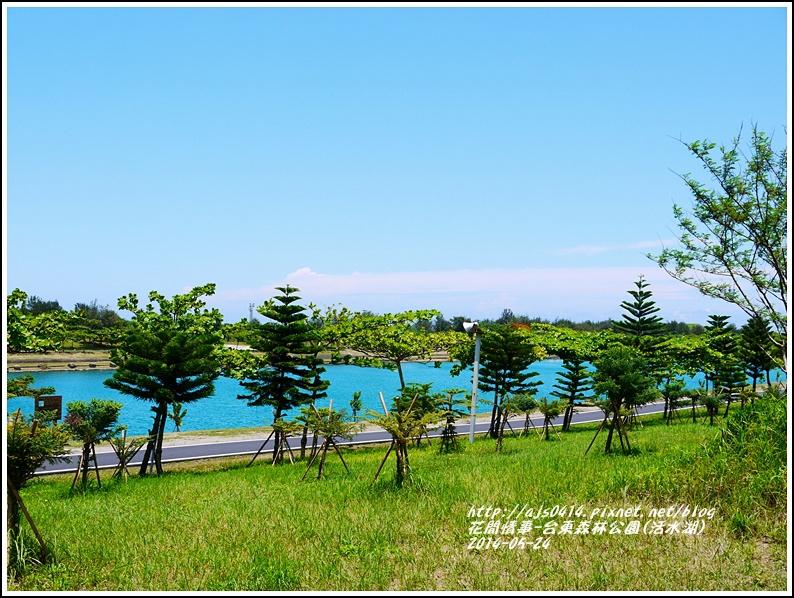 2014-06-活水湖2.jpg