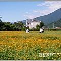 2014-06-關山花海1.jpg