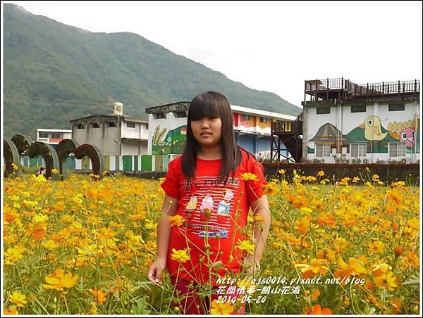 2014-06-關山花海5.jpg