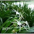 2014-06-夏-雲山水10.jpg