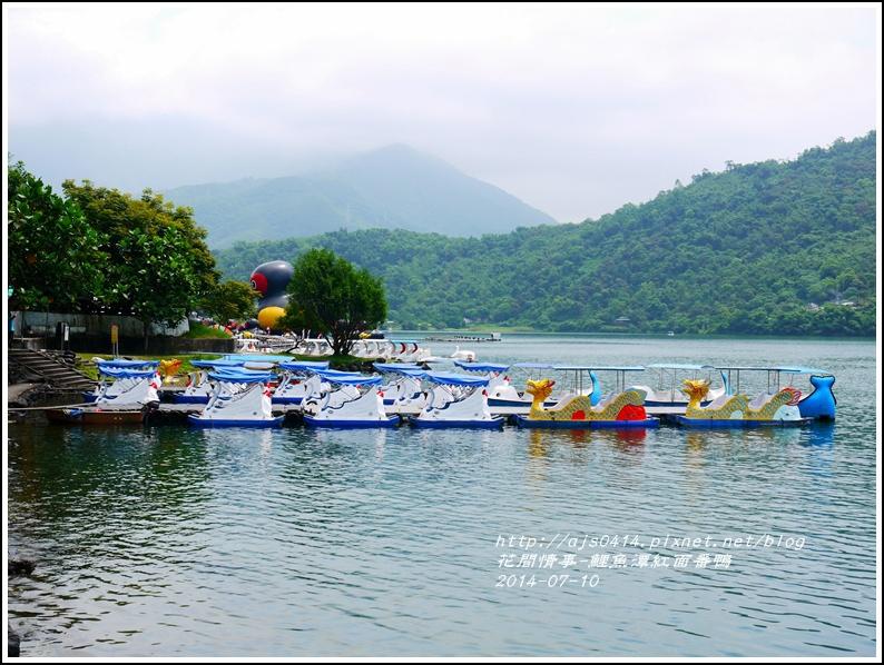 2014-07-鯉魚潭紅面番鴨1.jpg