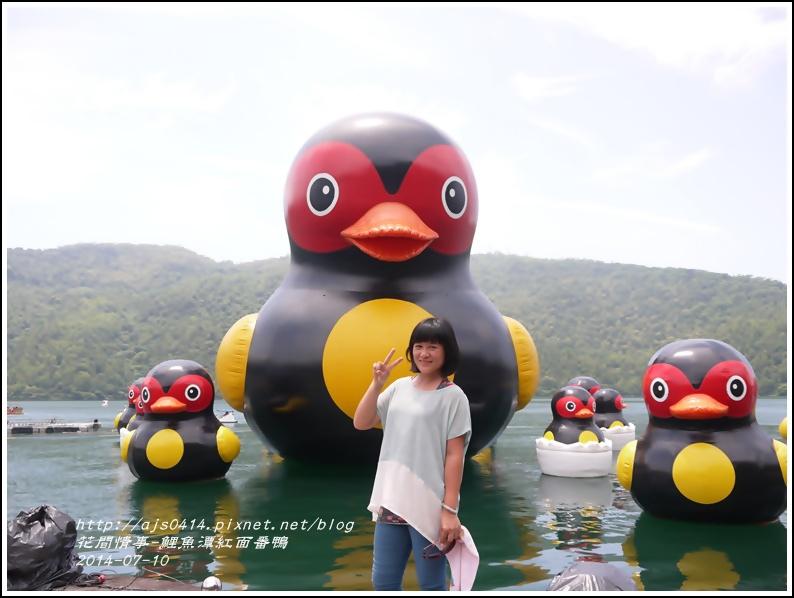 2014-07-鯉魚潭紅面番鴨8.jpg
