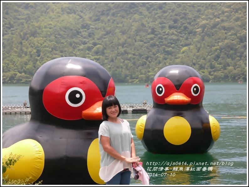 2014-07-鯉魚潭紅面番鴨14.jpg