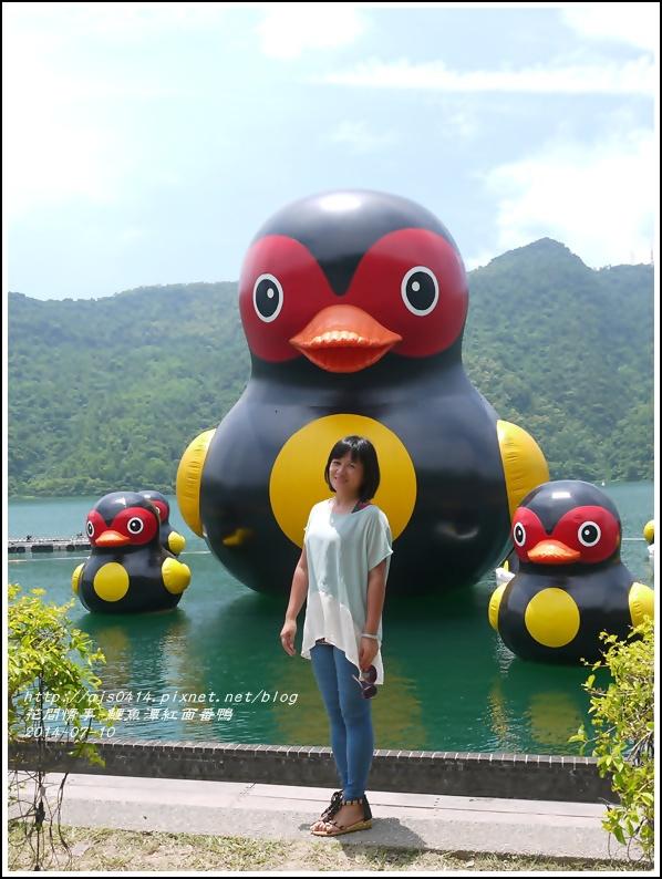 2014-07-鯉魚潭紅面番鴨16.jpg