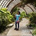 2014-07-知卡宣森林公園9.jpg