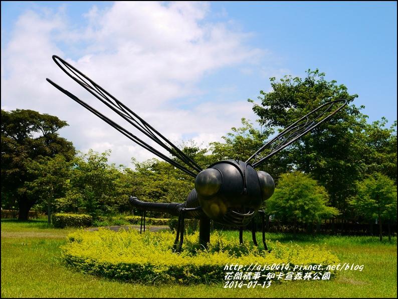 2014-07-知卡宣森林公園11.jpg
