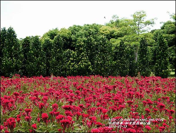 2014-07-知卡宣森林公園27.jpg