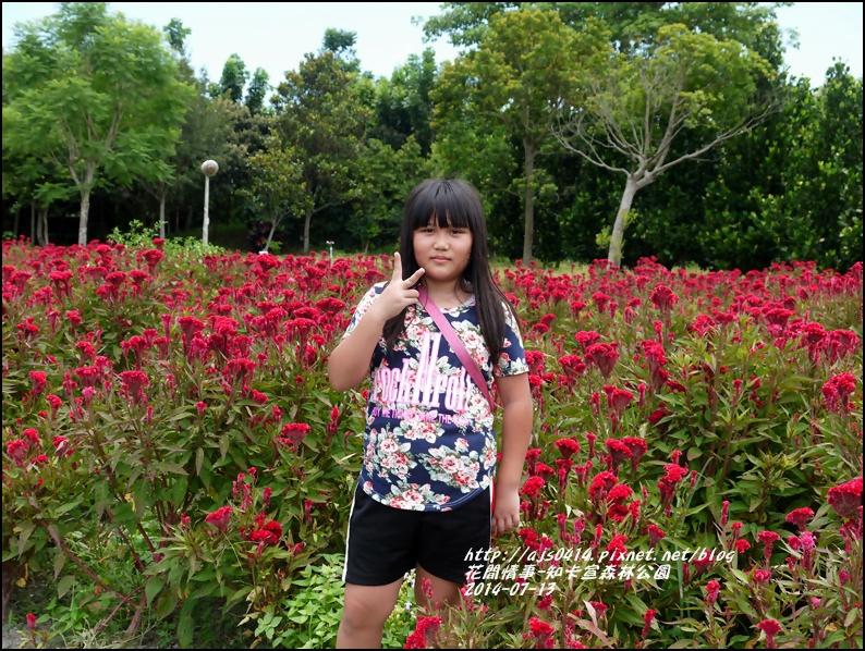 2014-07-知卡宣森林公園26.jpg
