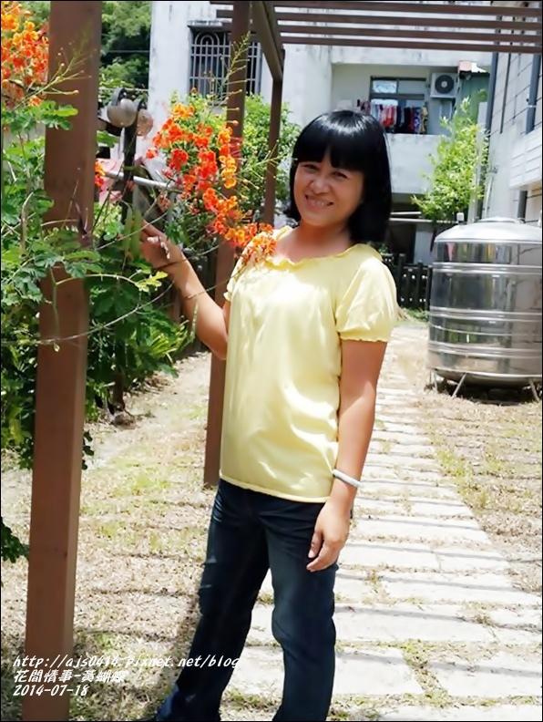 2014-07-黃蝴蝶9.jpg