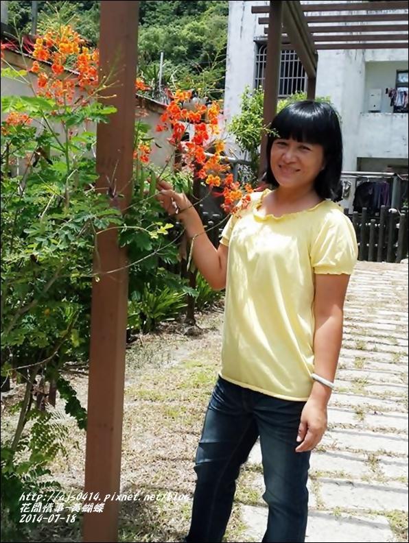 2014-07-黃蝴蝶8.jpg