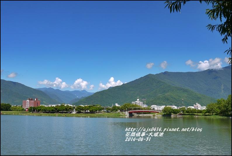 2014-09-池上大坡池3.jpg