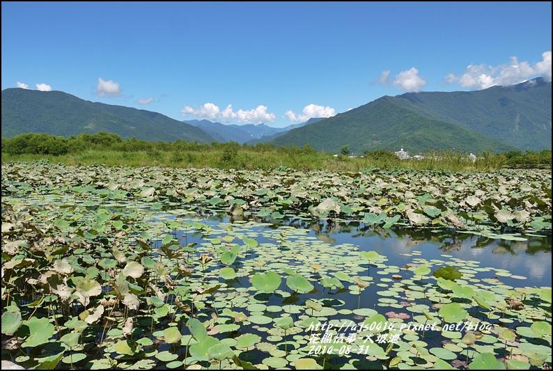 2014-09-池上大坡池6.jpg