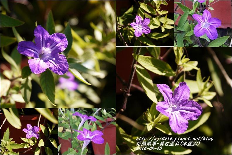 2014-09-蔓性蘆莉10.jpg