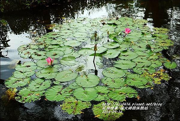 2014-09-瑞北鄉間休息站15.jpg