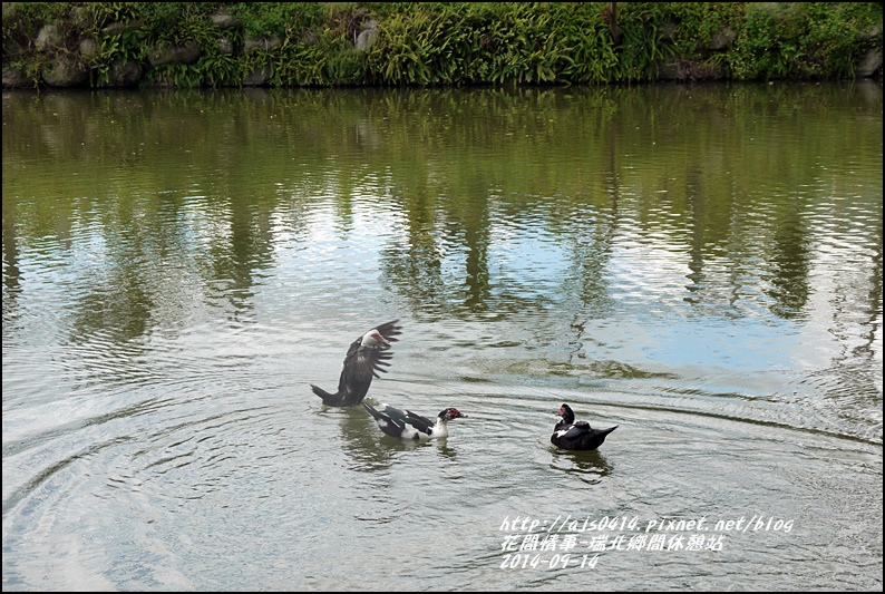 2014-09-瑞北鄉間休息站17.jpg