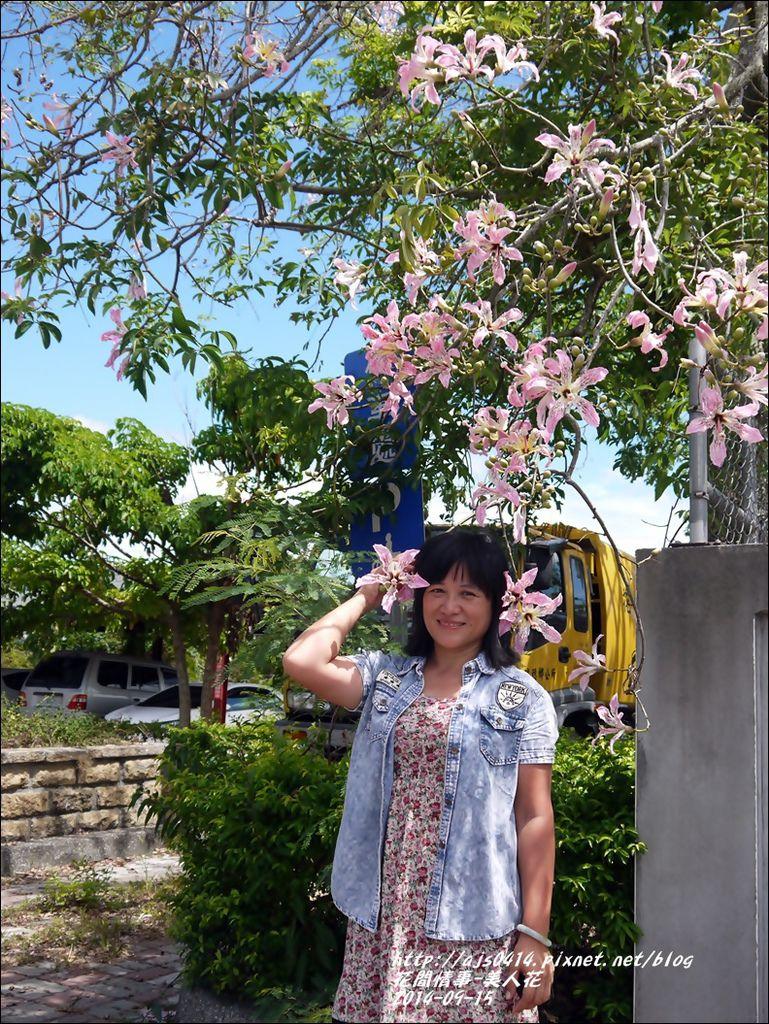 2014-09-美人花19.jpg