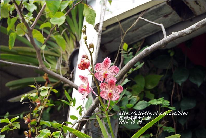 2014-10-千代蘭1.jpg