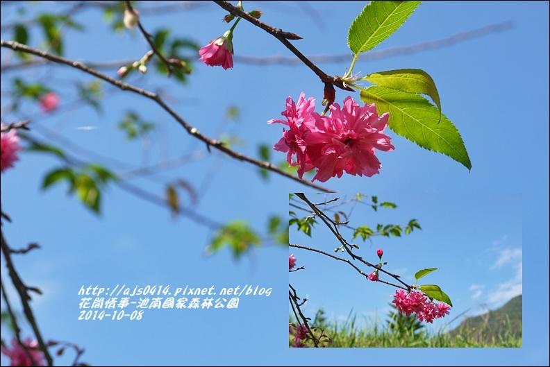 2014-10-池南國家森林公園50.jpg