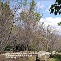 2014-10-池南國家森林公園22.jpg