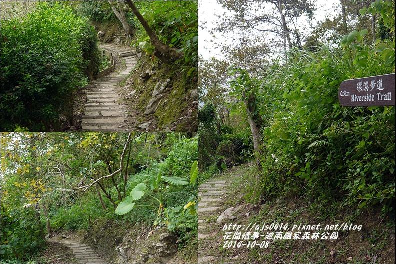 2014-10-池南國家森林公園27.jpg
