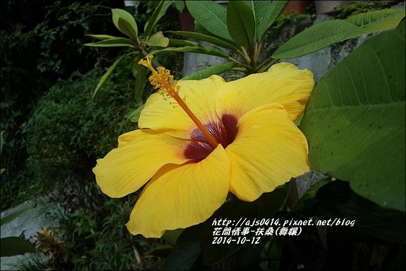 2014-10-扶桑(舞孃)7.jpg