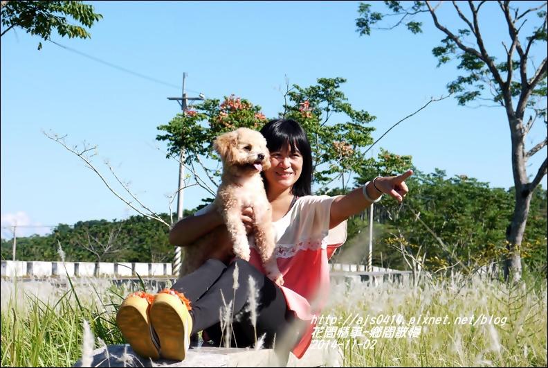 2014-11-鄉間散慢2.jpg