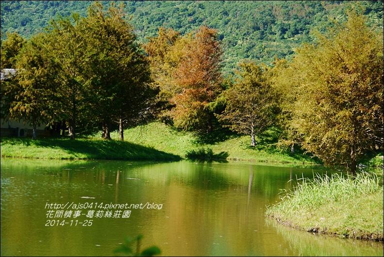 2014-11-葛莉絲莊園10.jpg