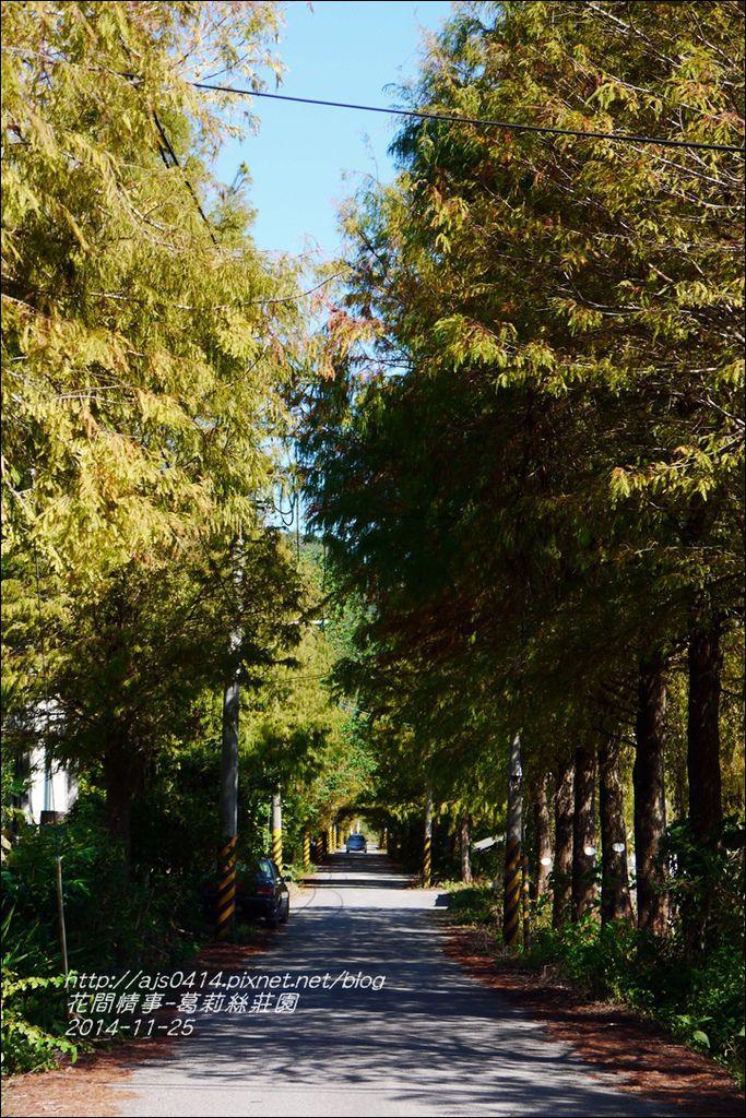 2014-11-葛莉絲莊園13.jpg