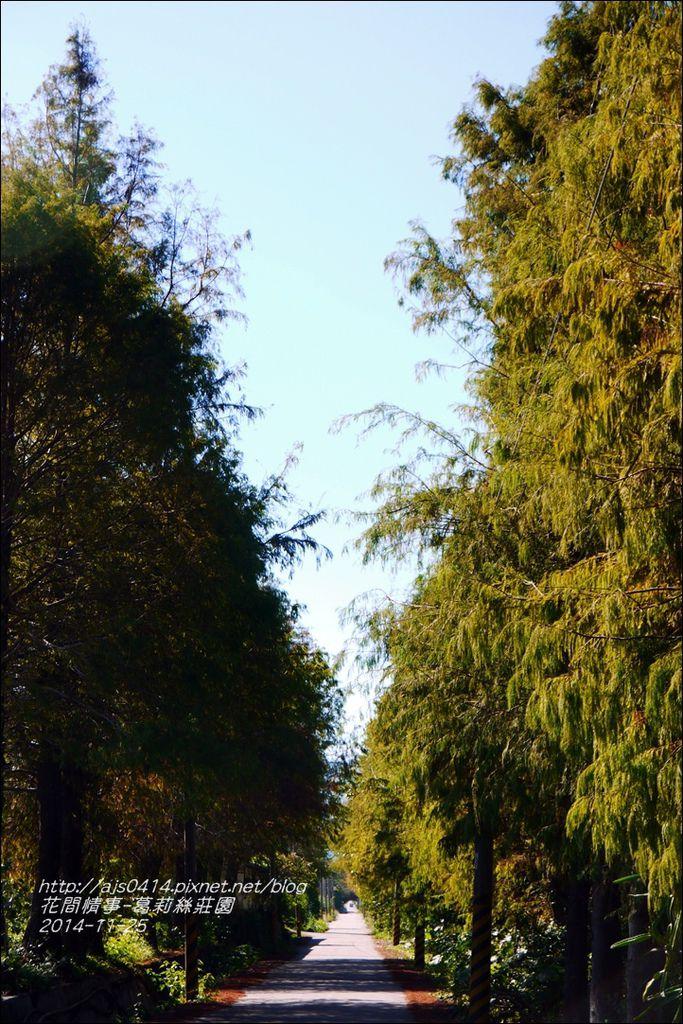 2014-11-葛莉絲莊園14.jpg