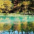 2014-11-雲山水13.jpg
