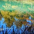 2014-11-雲山水17.jpg