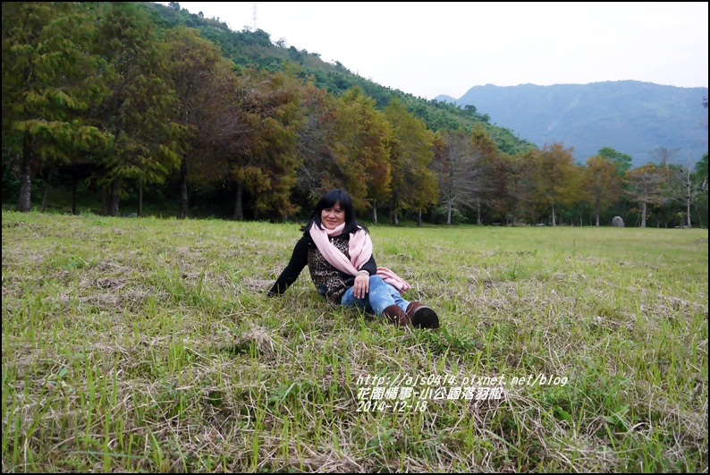 2014-12-獅子公園落羽松20.jpg
