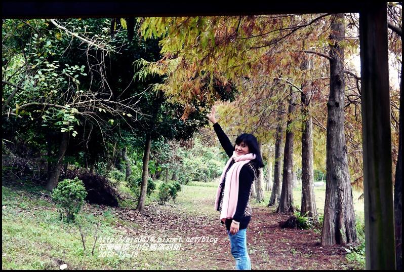 2014-12-獅子公園落羽松3.jpg