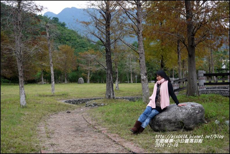 2014-12-獅子公園落羽松5.jpg