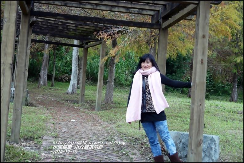 2014-12-獅子公園落羽松6.jpg