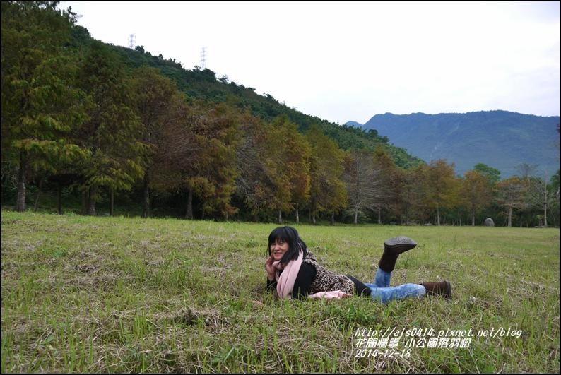2014-12-獅子公園落羽松10.jpg