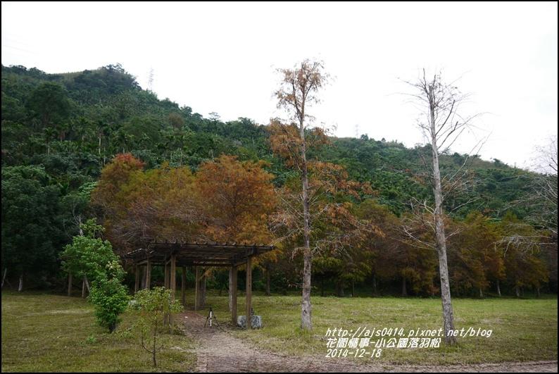 2014-12-獅子公園落羽松13.jpg